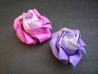 バラの花P1008.jpg