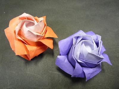 バラの花P1009.jpg