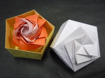 バラの花P1010.jpg