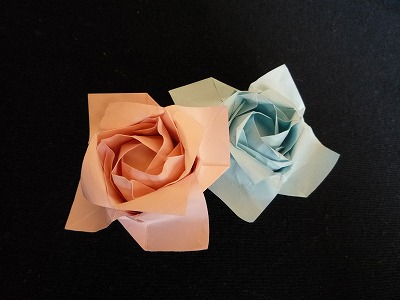 バラの花P1011.jpg